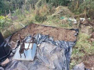 'Work Area' on the new plot cleared
